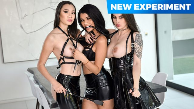 Madi Laine, Maddy May, Harley Haze - It's a Woman's World [Team Skeet Labs] - March 15, 2021